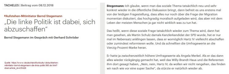 2018-12-10_Stegemann_das-soziale-Thema-und-sein-politisches-Potenzial